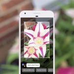 Google Lens is now available through Google Photos in all iOS and Android devices